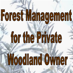 Forest Management for the Woodland Owner
