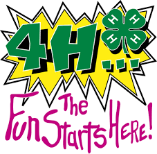 4-H The Fun Starts Here