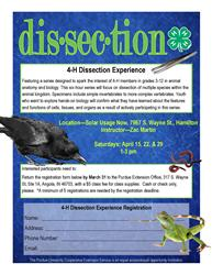 Dissection flier