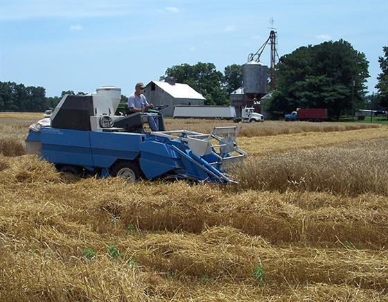 Jon Neufelder, a Purdue Extension educator, operates a small-plot harvester. The harvester is specif
