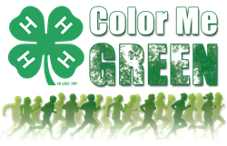 Color Me Green Dash