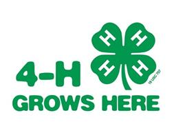 4H_GrowsHere