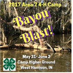 4-H Camp Picture