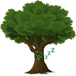 Drawing of sleeping tree, pixby.com.