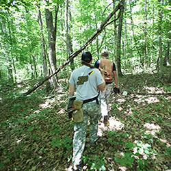 Field Day at Martell Forest, people walking through forest.