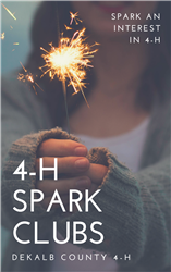Spark an interest in 4-H