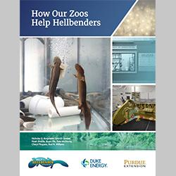 How Our Zoos Help the Hellbenders, FNR-544