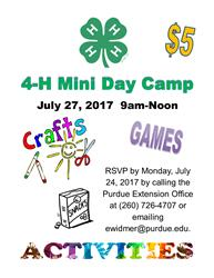mini day camp flyer