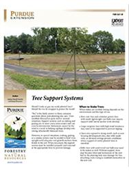 Tree Support Systems Cover