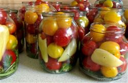 Canning Jars full of tomatoes