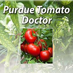 The cover of Purdue Extension's Tomato Doctor, an app that helps gardeners identify and diagnose pro