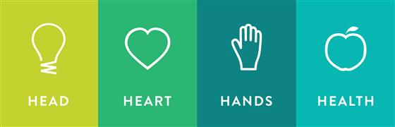 4-H Icons