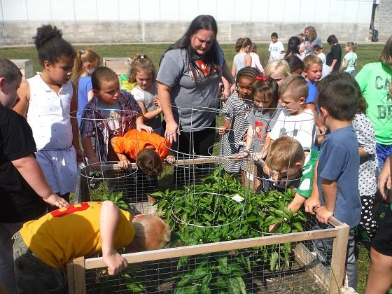 elementary school children learning about growing vegetables