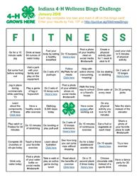 January 4-H Wellness Bingo Challenge