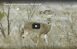 Handling Harvested Game, FNR-555-WV, video