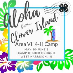 Area VII 4-H & Teen Camp