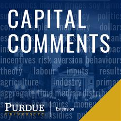 Capital Comments artwork
