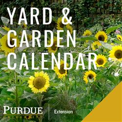 Yard and Garden calendar artwork