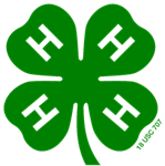 Green 4-H Clover, the national symbol for 4-H