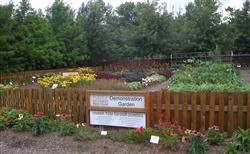 Purdue Extension - Marion County Demonstation Garden