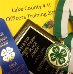 4-H achievements