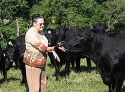 Judy Chandler hand feeds an apple to one of her cows, a favorite she raised on her farm. She credits