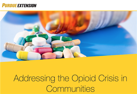 Opiod website banner