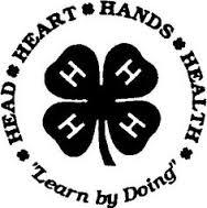 4-H Lean by Doing