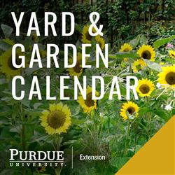 Yard and Calendar Logo