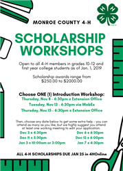 Scholarship flyer for workshops includes dates and information listed in article