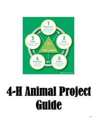 Animal Project Guide