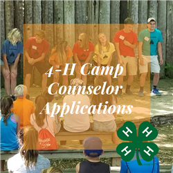 4-H Camp Counselor applications