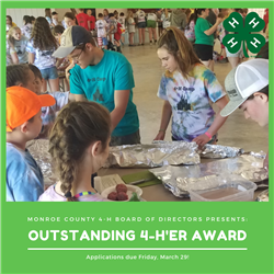 Picture of 4-H members at camp