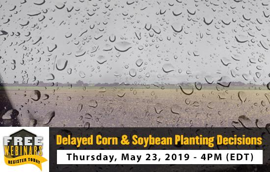 Delayed Corn & Soybean Planting Decisions webinar, Thursday, May 23, 2019 at 4pm (EDT)