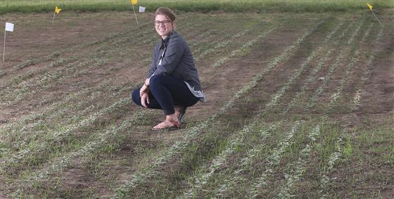 Marguerite Bolt has been appointed as Purdue Extension's first hemp production specialist. She looks
