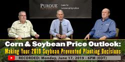 Corn & Soybean Price Outlook: Delayed Planting webinar recording from Monday, June 17th