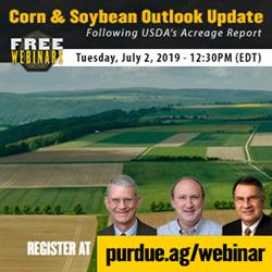 Corn & Soybean Outlook Webinar July 2 at 12:30 PM, Register at https://purdue.ag/webinar