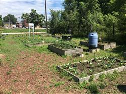 Trinity Baptist Church Urban Garden