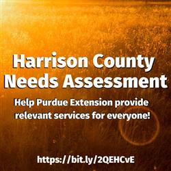 Harrison County Needs Assessment