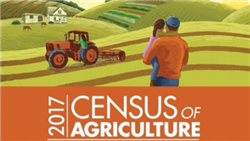 US Ag Census