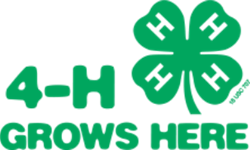 Warren County 4-H