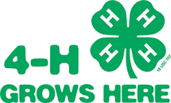 4H Grows
