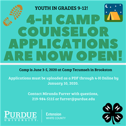 Camp Counselor Applications are Open!