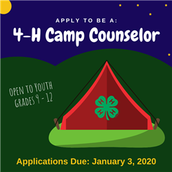 4-H Camp Counselor