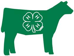4-H Beef
