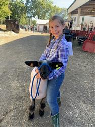smiling youth with show-ready sheep posing at a county fair.