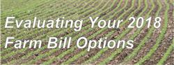 Evaluating Your 2018 Farm Bill Options
