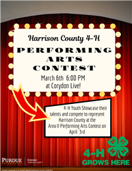 performing arts county flyer