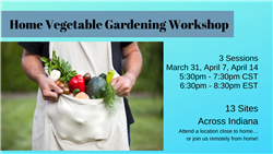 Home Veg WkShop