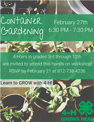 container gardening 4h